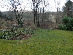 Image of Garden and views