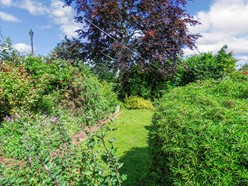 Image of Garden Additional Photo 2