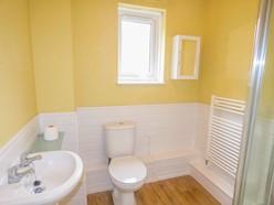 Image of Shower Room.