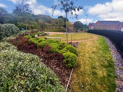 Image of Communal garden