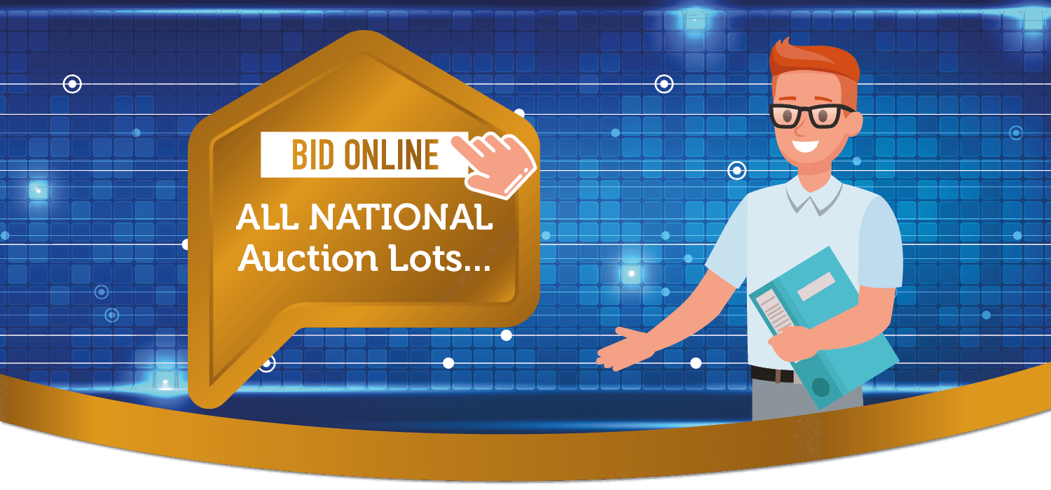 bid online all national lots