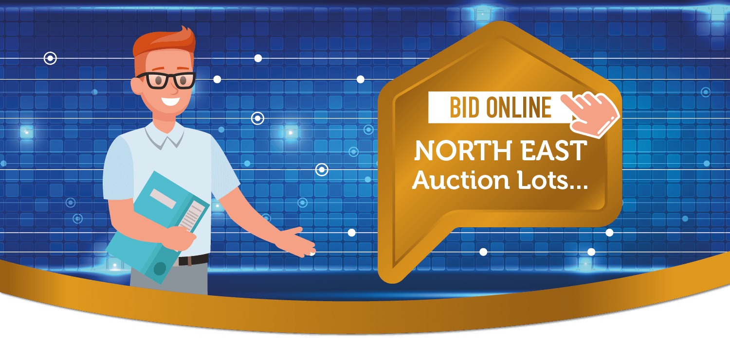 bid online north east auction lots